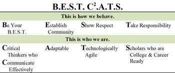 Best Cats 2