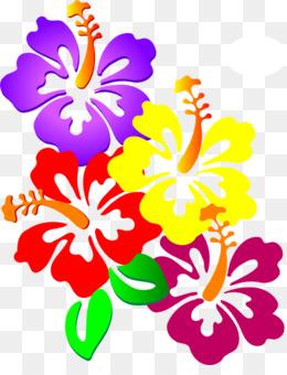 kisspng-shoeblackplant-hawaiian-hibiscus-clip-art-luau-party-5b43a8263a2a66.8382393615311606142383
